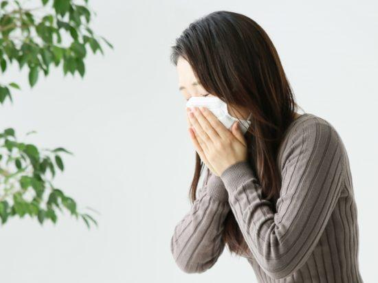 (株)エントリージャパン 鼻ヘルパー 花粉症 鼻炎対策 購入方法 効果 口コミ
