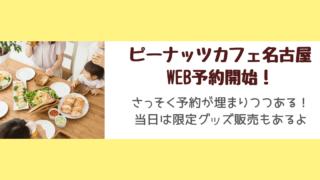 ピーナッツカフェ名古屋 久屋大通パーク どこ 営業時間 アクセス 駐車場 予約